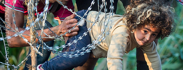 A refugee girl moves under barbed wire as she crosses from Serbia to Hungary in  August 2015.